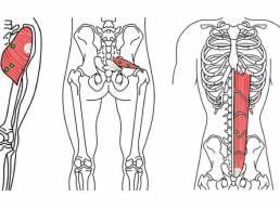 درمان با استفاده از نقاط تریگر و طب سوزنی trigger-point therapy and acupuncture
