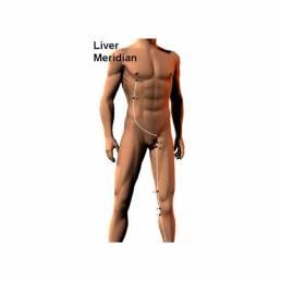 درمان کبد چرب با طب سوزنی Fatty liver treatment with acupuncture