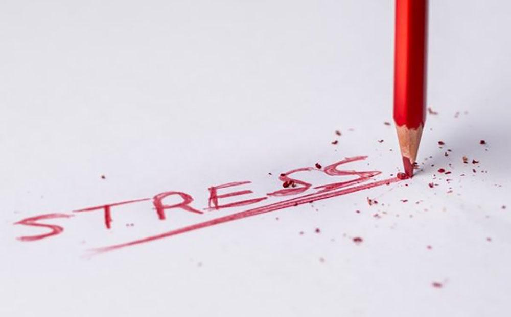 استرس بی استرس